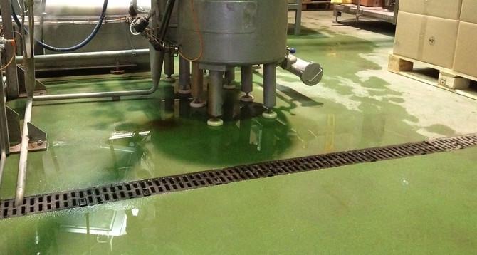 """""""Аграна"""" - переробка фруктів і ягід:  Площа: 2400 м2 покриття Peran STB; покриття Flowfresh HF"""