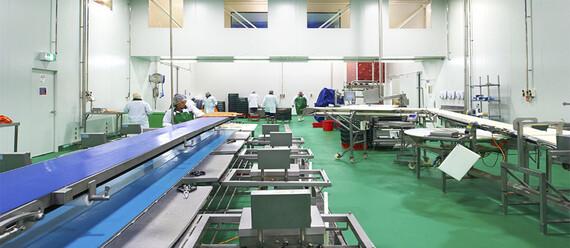 Рыбоперерабатывающий завод «Huon Aquaculture» - фото №4 - фото № 4